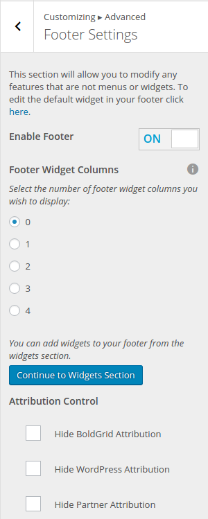 Disabled Footer Widget In WordPress Customizer