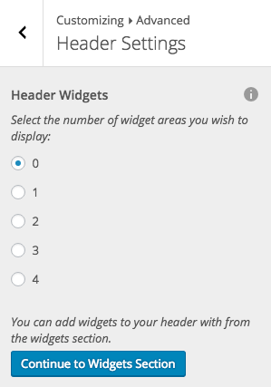 Disabled Header Widget In WordPress Customizer