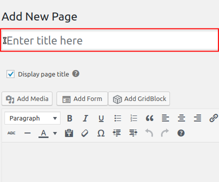 New Blank Page Title field