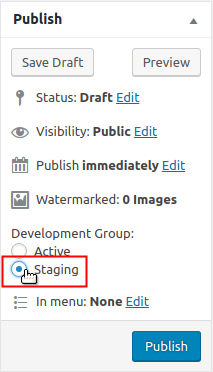 Publish options Development Group Staging selection