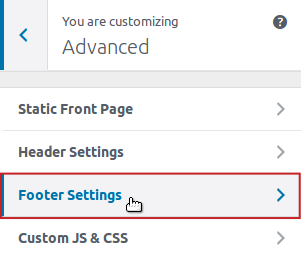 Customizer Advanced Footer Settings menu option