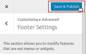 Footer Settings Save & Publish button
