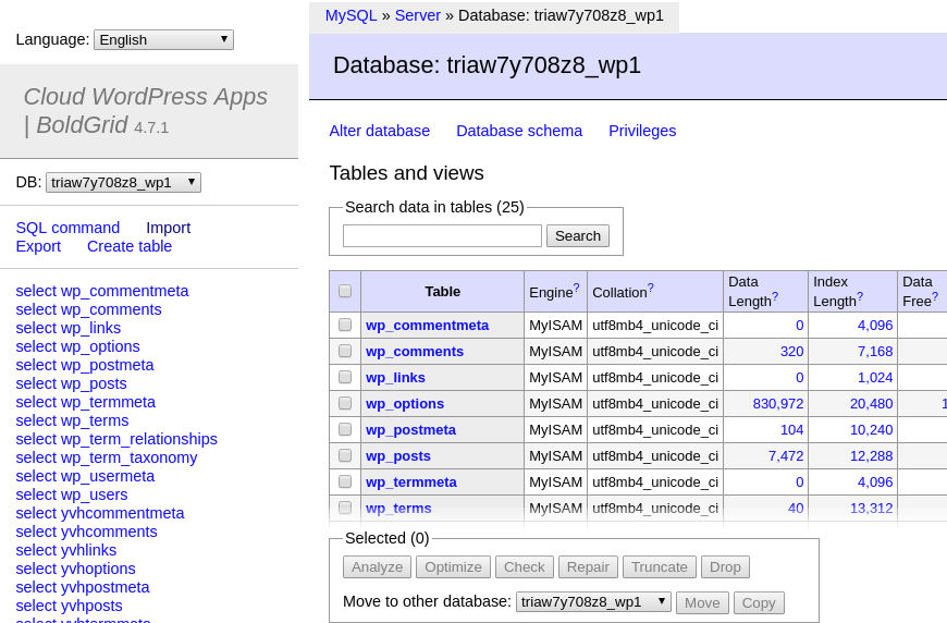 Database Manager in Cloud WordPress